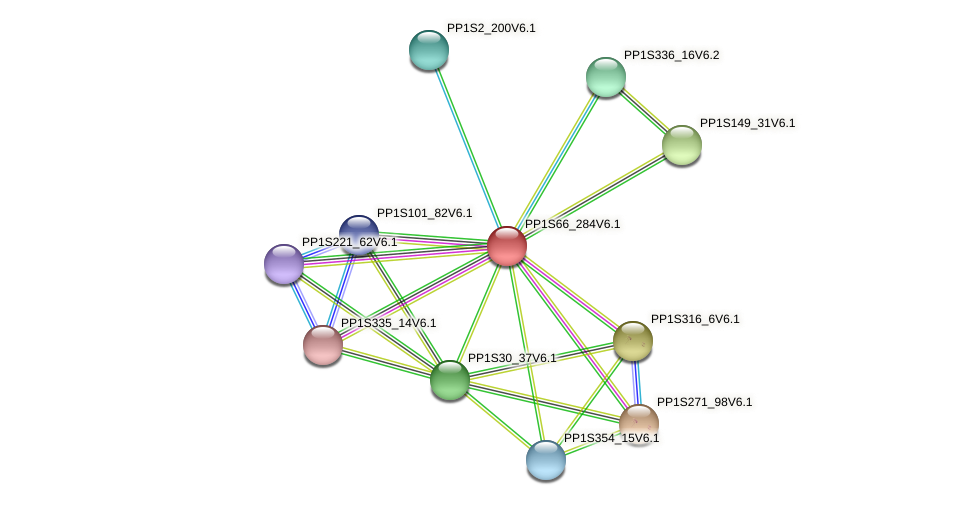 PP1S66_284V6.1 protein (Physcomitrella patens) - STRING interaction network