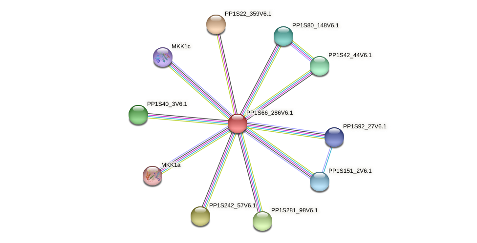 PP1S66_286V6.1 protein (Physcomitrella patens) - STRING interaction network