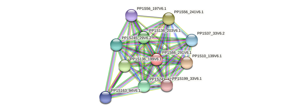 PP1S66_291V6.1 protein (Physcomitrella patens) - STRING interaction network