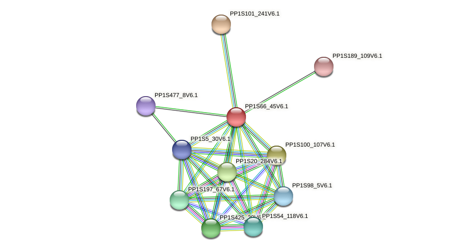 PP1S66_45V6.1 protein (Physcomitrella patens) - STRING interaction network