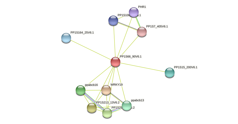 PP1S66_90V6.1 protein (Physcomitrella patens) - STRING interaction network
