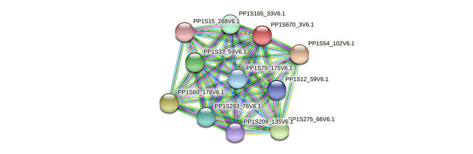 PP1S670_3V6.1 protein (Physcomitrella patens) - STRING interaction network