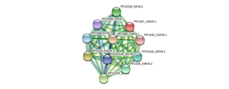 PP1S67_100V6.1 protein (Physcomitrella patens) - STRING interaction network