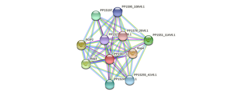 PP1S67_110V6.1 protein (Physcomitrella patens) - STRING interaction network
