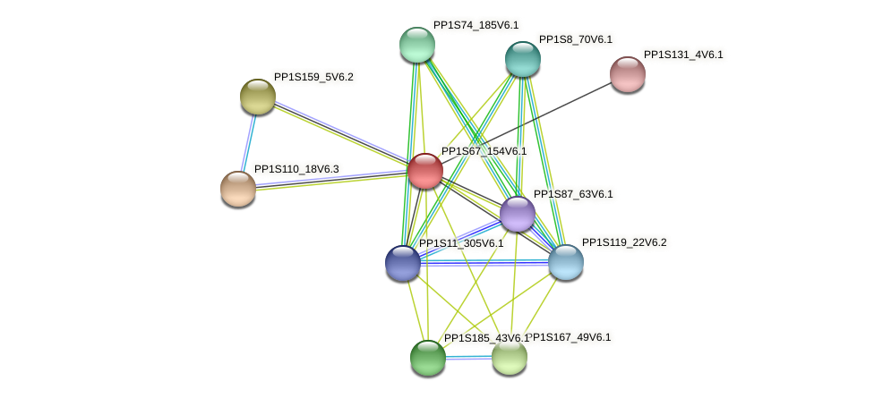 PP1S67_154V6.1 protein (Physcomitrella patens) - STRING interaction network