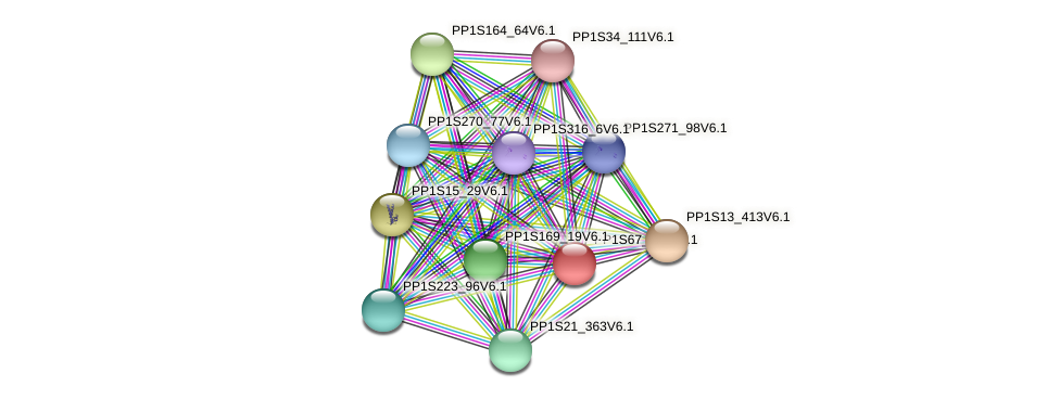 PP1S67_178V6.1 protein (Physcomitrella patens) - STRING interaction network