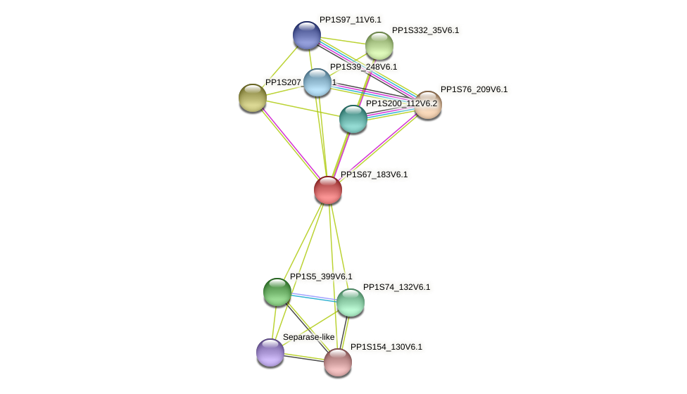 PP1S67_183V6.1 protein (Physcomitrella patens) - STRING interaction network