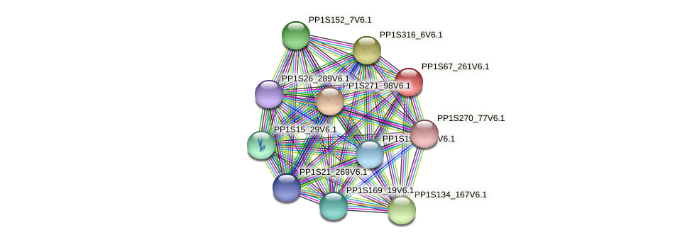 PP1S67_261V6.1 protein (Physcomitrella patens) - STRING interaction network