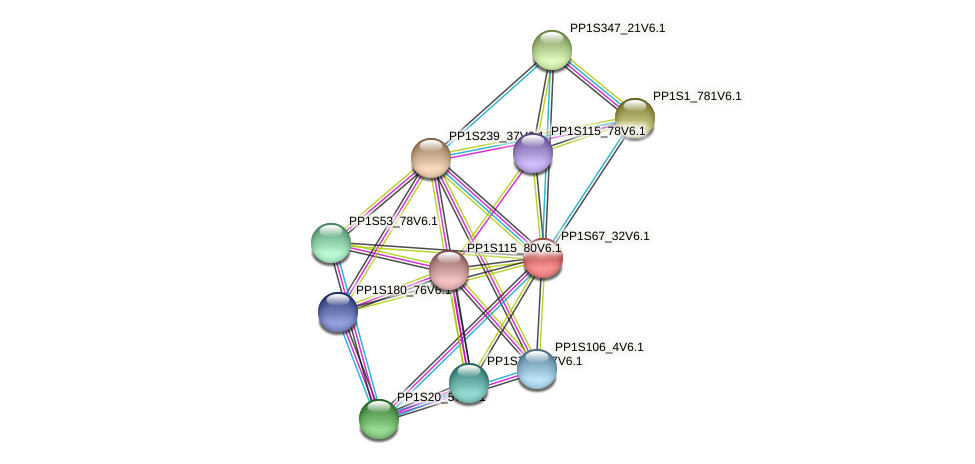 PP1S67_32V6.1 protein (Physcomitrella patens) - STRING interaction network