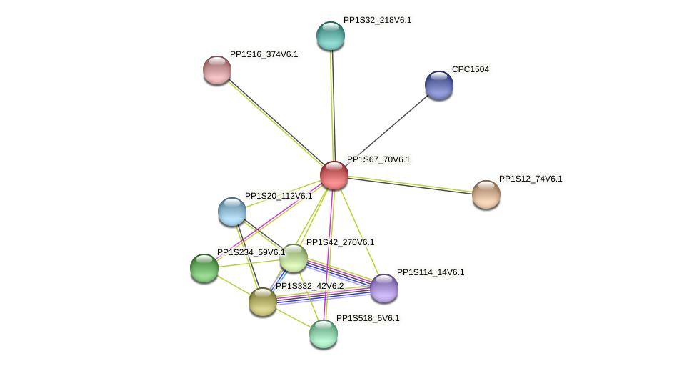 PP1S67_70V6.1 protein (Physcomitrella patens) - STRING interaction network