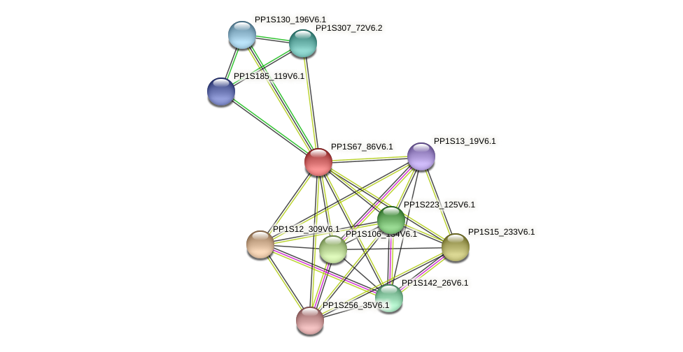 PP1S67_86V6.1 protein (Physcomitrella patens) - STRING interaction network
