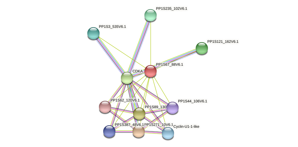 PP1S67_88V6.1 protein (Physcomitrella patens) - STRING interaction network