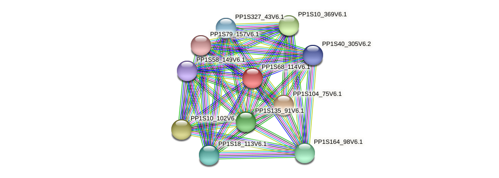 PP1S68_114V6.1 protein (Physcomitrella patens) - STRING interaction network