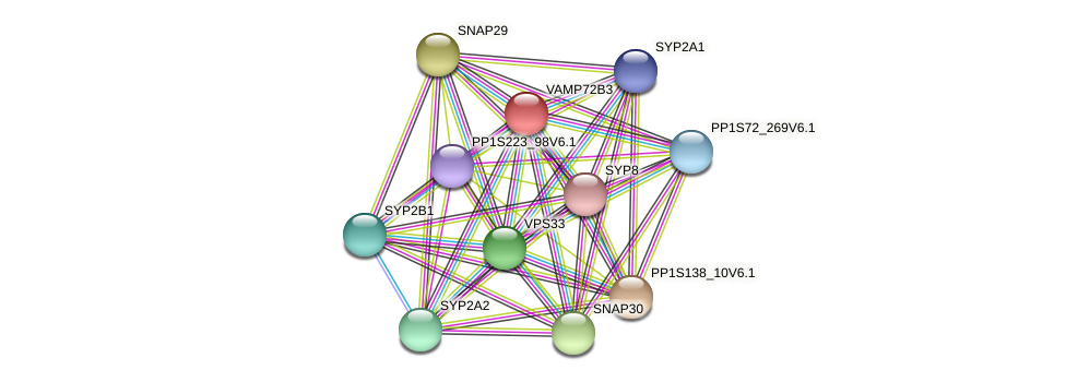 VAMP72B3 protein (Physcomitrella patens) - STRING interaction network