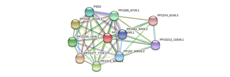 PP1S68_234V6.1 protein (Physcomitrella patens) - STRING interaction network