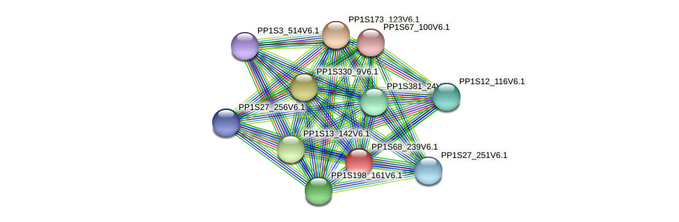 PP1S68_239V6.1 protein (Physcomitrella patens) - STRING interaction network