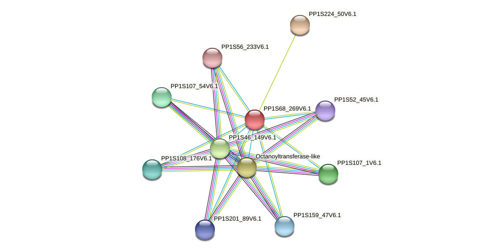 PP1S68_269V6.1 protein (Physcomitrella patens) - STRING interaction network