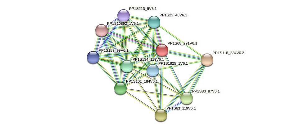 PP1S68_291V6.1 protein (Physcomitrella patens) - STRING interaction network