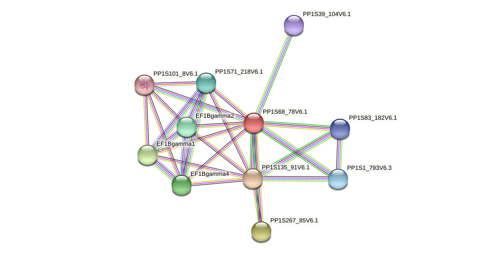 PP1S68_78V6.1 protein (Physcomitrella patens) - STRING interaction network