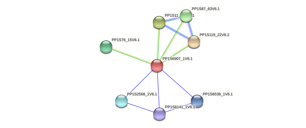 PP1S6907_1V6.1 protein (Physcomitrella patens) - STRING interaction network