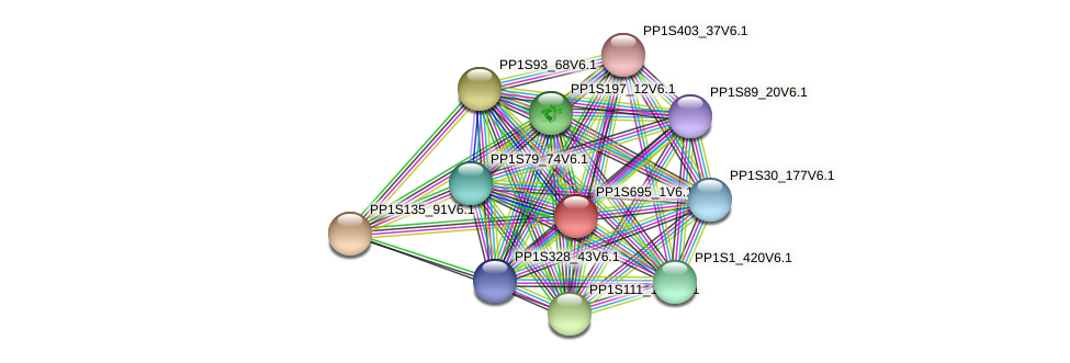 PP1S695_1V6.1 protein (Physcomitrella patens) - STRING interaction network