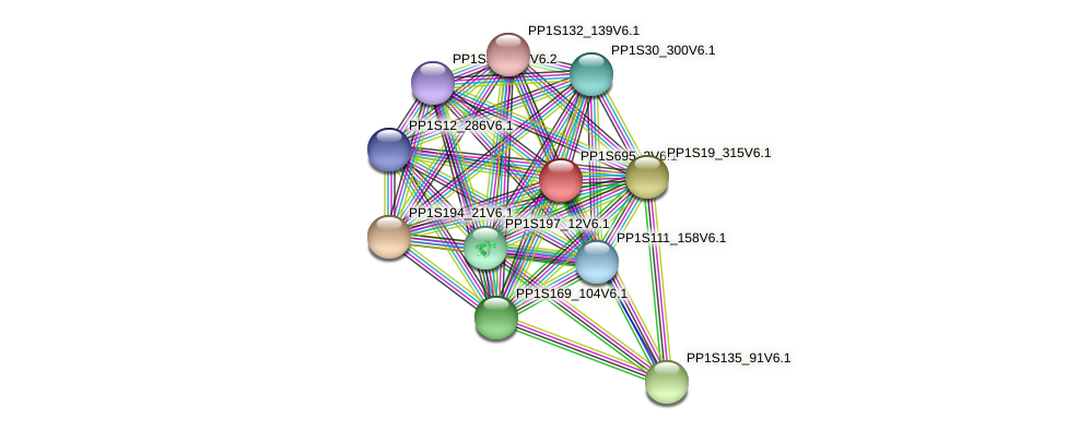 PP1S695_2V6.1 protein (Physcomitrella patens) - STRING interaction network