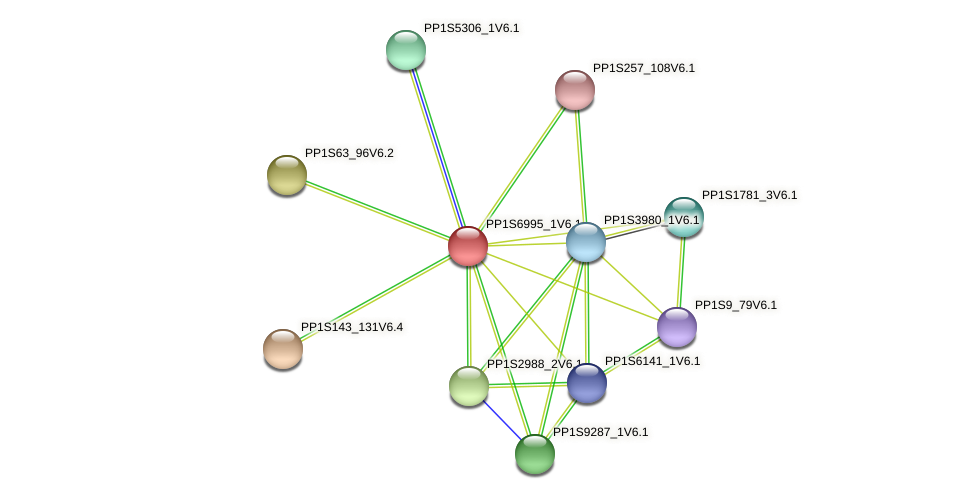 PP1S6995_1V6.1 protein (Physcomitrella patens) - STRING interaction network