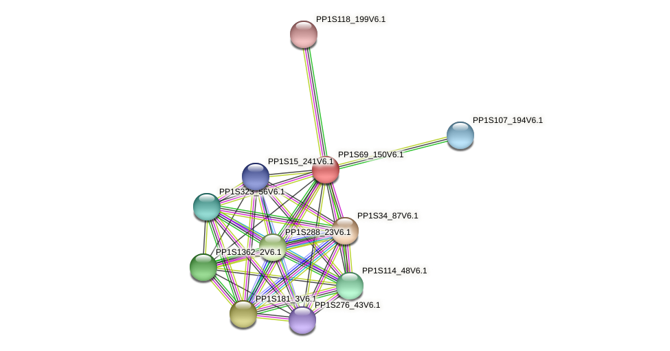 PP1S69_150V6.1 protein (Physcomitrella patens) - STRING interaction network