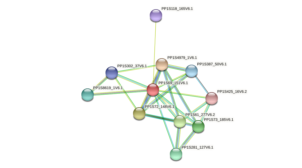 PP1S69_151V6.1 protein (Physcomitrella patens) - STRING interaction network