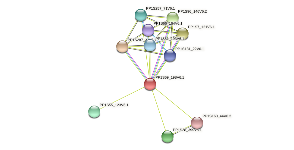 PP1S69_198V6.1 protein (Physcomitrella patens) - STRING interaction network