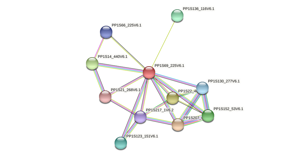 PP1S69_225V6.1 protein (Physcomitrella patens) - STRING interaction network