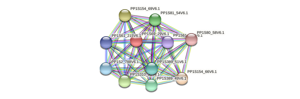 PP1S69_29V6.1 protein (Physcomitrella patens) - STRING interaction network