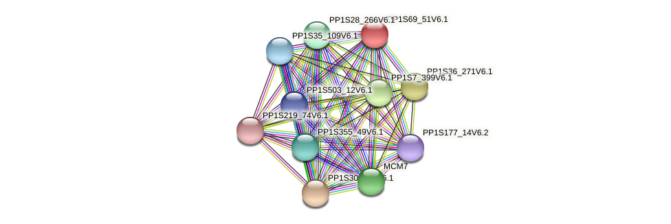 PP1S69_51V6.1 protein (Physcomitrella patens) - STRING interaction network