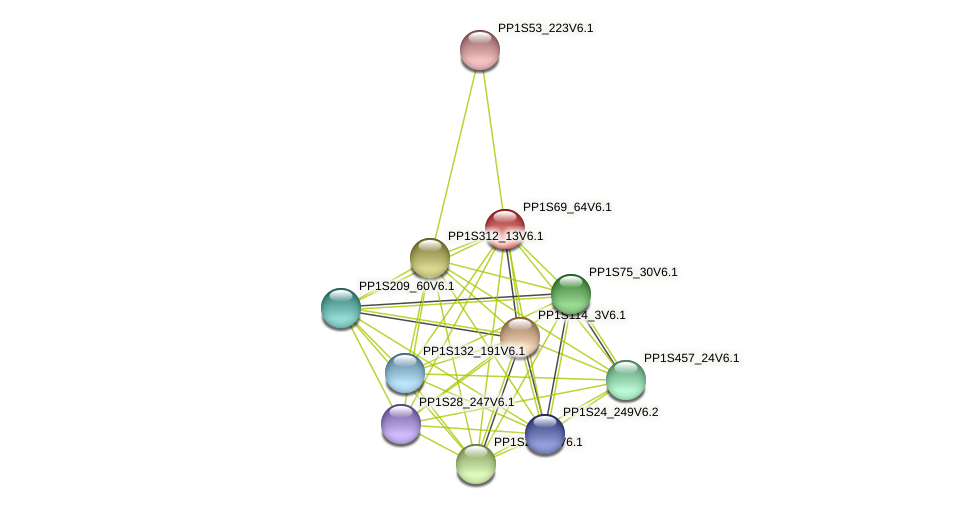PP1S69_64V6.1 protein (Physcomitrella patens) - STRING interaction network