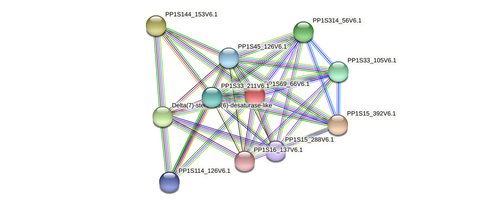 PP1S69_66V6.1 protein (Physcomitrella patens) - STRING interaction network