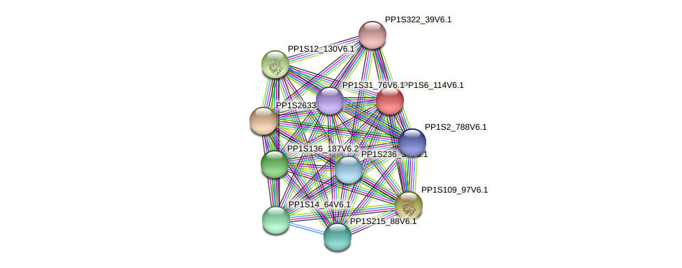 PP1S6_114V6.1 protein (Physcomitrella patens) - STRING interaction network
