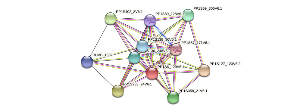 PP1S6_129V6.1 protein (Physcomitrella patens) - STRING interaction network