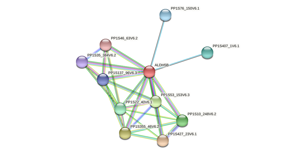 ALDH5B protein (Physcomitrella patens) - STRING interaction network