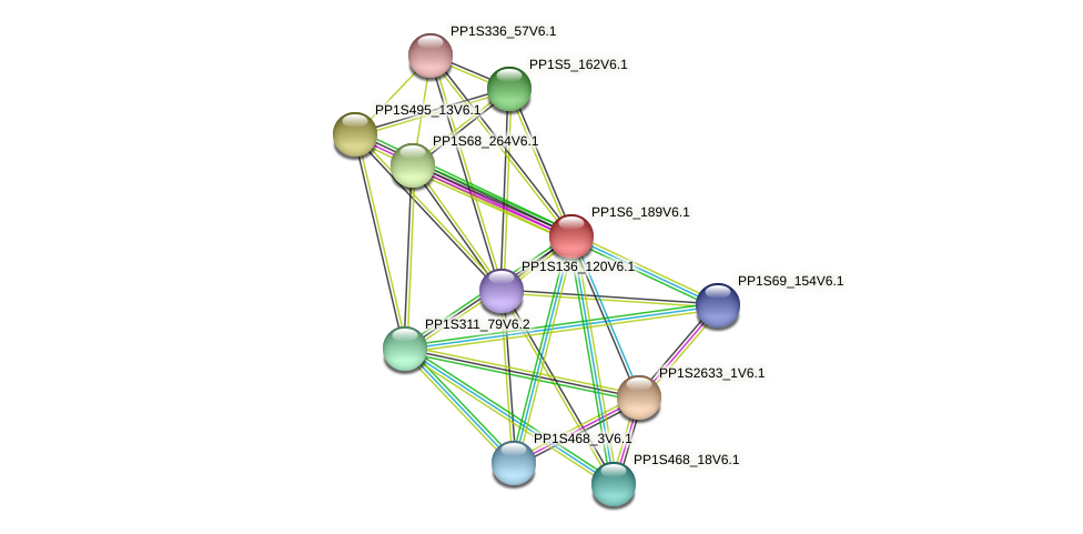 PP1S6_189V6.1 protein (Physcomitrella patens) - STRING interaction network