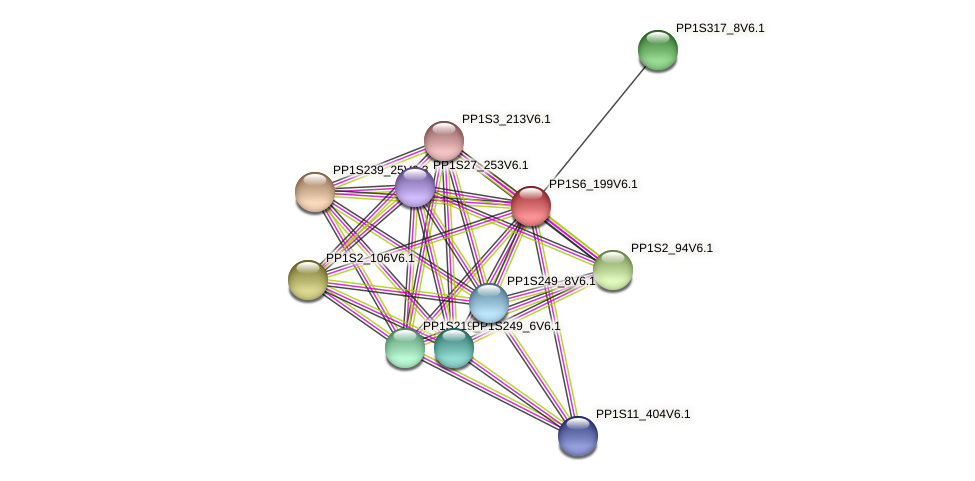 PP1S6_199V6.1 protein (Physcomitrella patens) - STRING interaction network