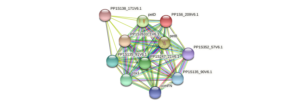 PP1S6_209V6.1 protein (Physcomitrella patens) - STRING interaction network