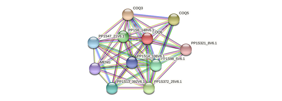 PP1S6_302V6.1 protein (Physcomitrella patens) - STRING interaction network