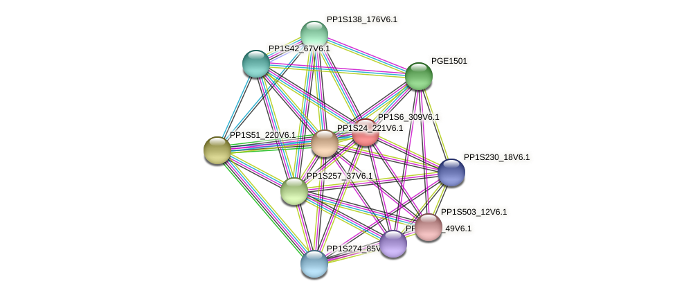 PP1S6_309V6.1 protein (Physcomitrella patens) - STRING interaction network