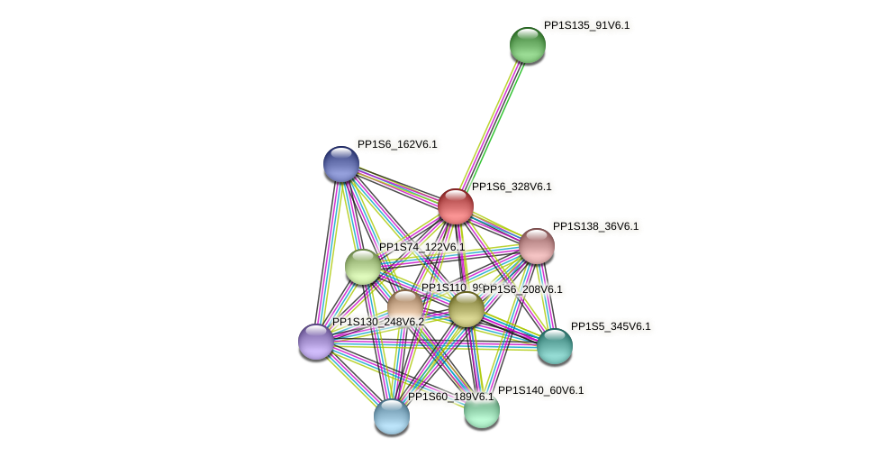 PP1S6_328V6.1 protein (Physcomitrella patens) - STRING interaction network