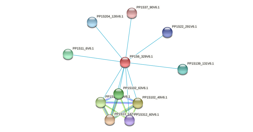 PP1S6_329V6.1 protein (Physcomitrella patens) - STRING interaction network