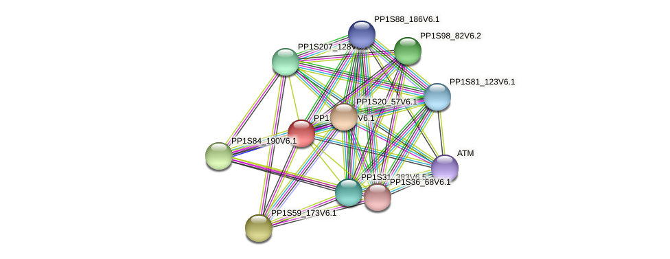 PP1S6_364V6.1 protein (Physcomitrella patens) - STRING interaction network