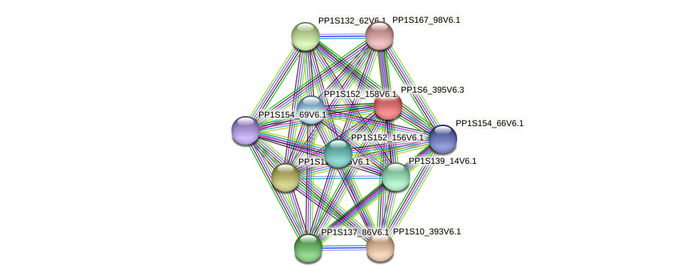 PP1S6_395V6.1 protein (Physcomitrella patens) - STRING interaction network