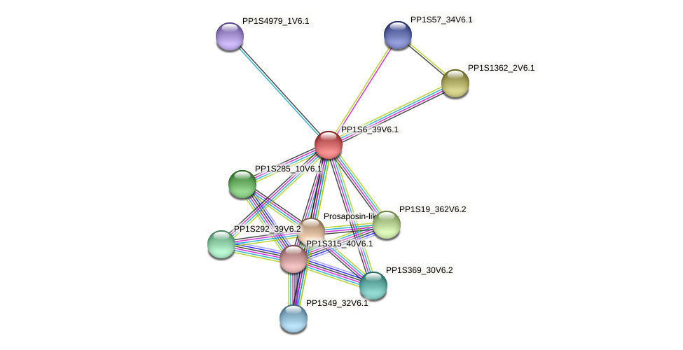 PP1S6_39V6.1 protein (Physcomitrella patens) - STRING interaction network