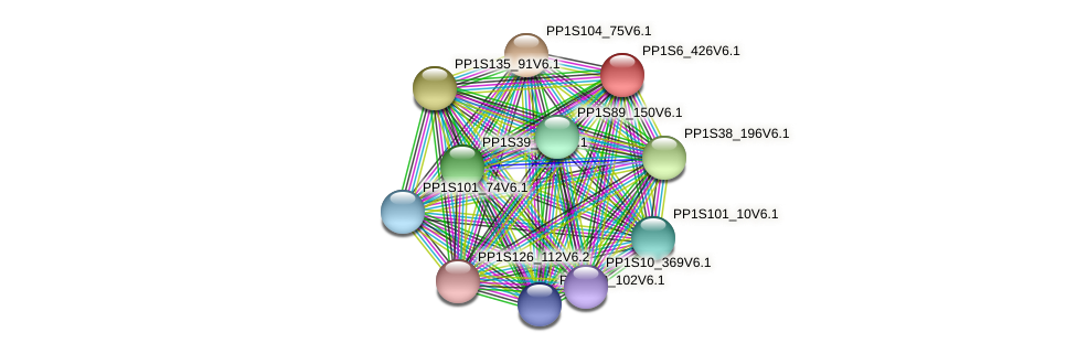 PP1S6_426V6.1 protein (Physcomitrella patens) - STRING interaction network