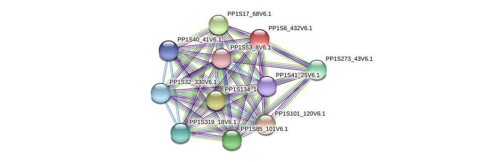 PP1S6_432V6.1 protein (Physcomitrella patens) - STRING interaction network